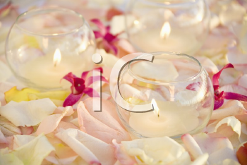 Royalty Free Photo of Lit Candles With Purple Orchids and Rose Petals