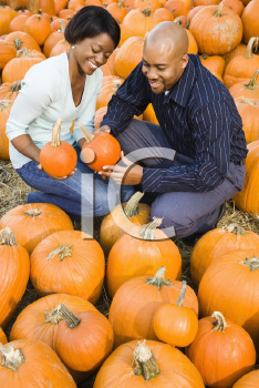 Royalty Free Photo of a Couple Picking Out Pumpkins and Smiling at an Outdoor Market