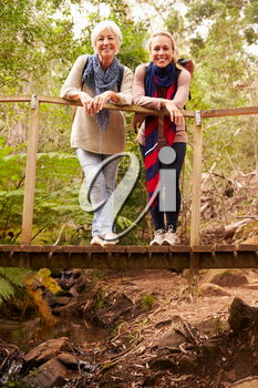 Mother and adult daughter on a bridge in a forest, to camera