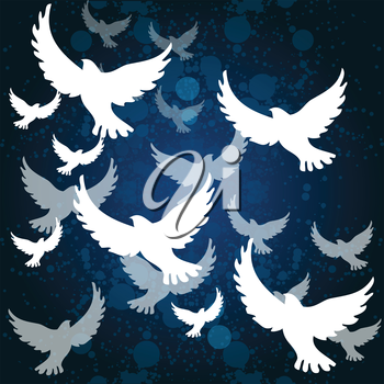 blue background with white birds
