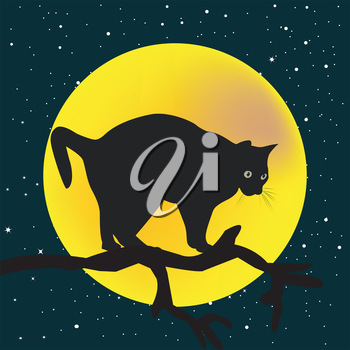 Tree branch with a cat in the stary night and moon background