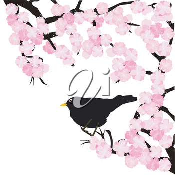 Spring landscape background with bird and sakura