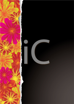 Royalty Free Clipart Image of a Black Background With a Floral Border