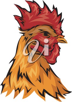 Illustration Featuring a Rooster