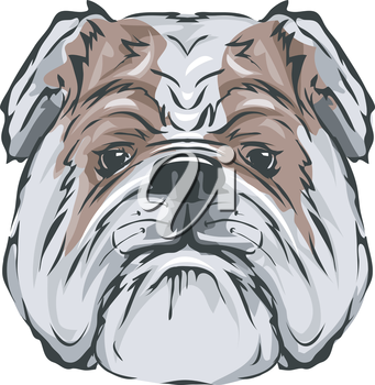 Illustration Featuring a Bull Dog