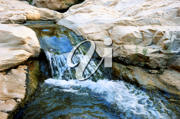 Streams and waterfalls Nature Reserve Ein Gedi at the Dead Sea in Israel