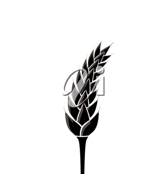 Illustration black silhouette of spikelet of wheat isolated on white background - vector