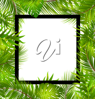 Illustration Beautiful Border with Tropical Palm Leaves, Summer Frame - Vector