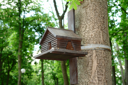 Royalty Free Photo of a Bird House