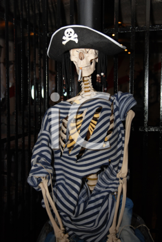 Royalty Free Photo of a Pirate Skeleton