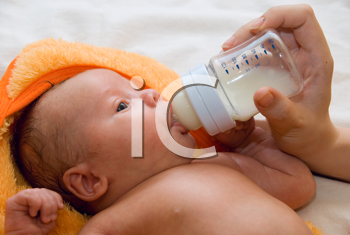 Royalty Free Photo of a Mother Feeding Her Baby