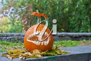 Halloween pumpkin on leaves background