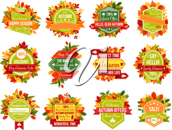 Autumn sale icons and tag ribbons for seasonal price discount promo on autumn foliage of maple leaf, oak acorn fall, chestnut or birch and poplar falling leaves. Vector isolated design set