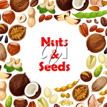 Nuts and fruit seeds poster. Vector walnut, hazelnut or peanut and coconut, almond or pistachio and bean legume pod, macadamia or filbert kernel nut and pumpkin or sunflower seeds