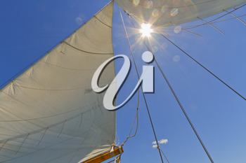 Views of the mast, sails and rigging on the private sail yacht.
