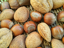 Mix of different types nuts, close up