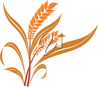 Royalty Free Clipart Image of Wheat