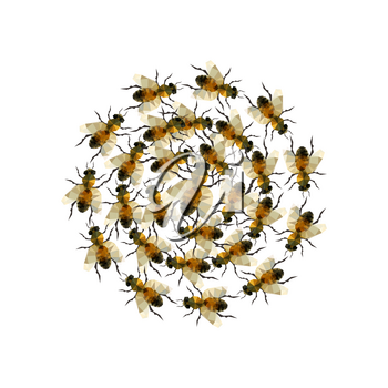 Modern origami illustration with a grup of honeybees isolated on white background