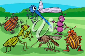 Cartoon Illustration of Insects and Bugs Funny Animal Characters Group