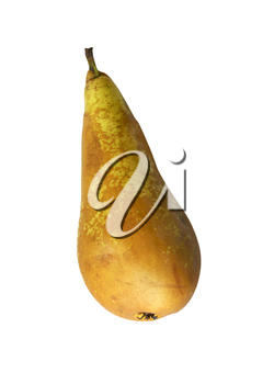 Ripe pear on white background is insulated
