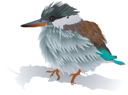 Vector image of a small bird
