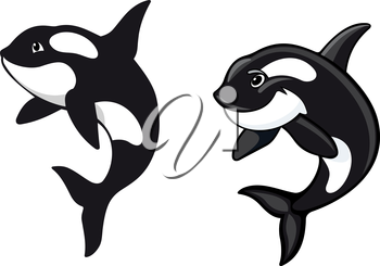 Two killer whales in cartoon style for wildlife design