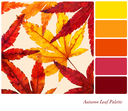Autumn leaf palette with complimentary colour swatches