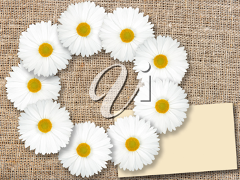 Abstract frame with white flowers and blank message-card on textile background. Close-up. Studio photography.