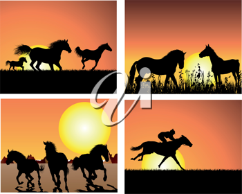 Set of horse silhouette on sunset background. Vector illustration.