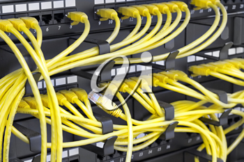 Royalty Free Photo of a Patch Panel Server Rack