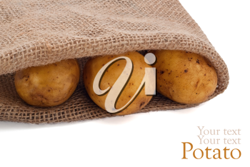 Potato in sack on white background