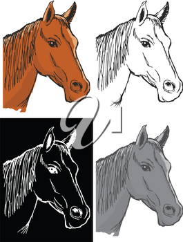 Editable vector illustrations in variations, bay horse
