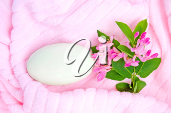 White soap, a branch with pink flowers and green leaves on a pink towel
