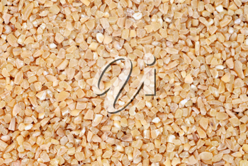 Royalty Free Photo of a Seed Background