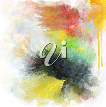 Watercolor Digital Painting Of Feathers Background