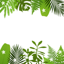 Tropical leaves background with palm,fern,monstera,acacia and banana leaves. Vector illustration
