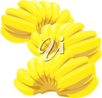 Royalty Free Clipart Image of Bunches of Bananas