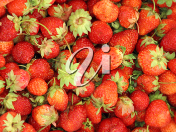 background of fresh, delicious strawberries