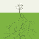 Small tree with the big root. A vector illustration