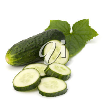 cucumber isolated on white background close up