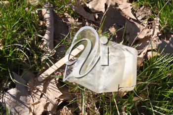 plastic cup of ice cream on the nature of a waste