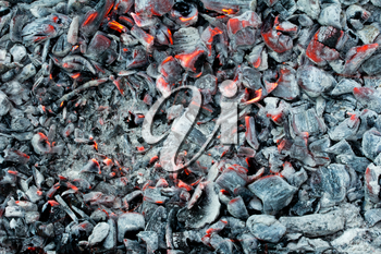 Background of the hot charcoal