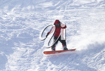 people snowboarding on the snow