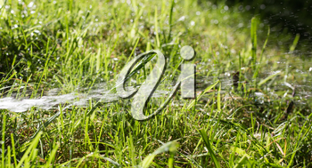 watering grass on nature