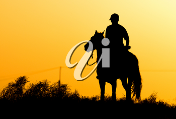 Silhouette of a man on a horse at sunset .