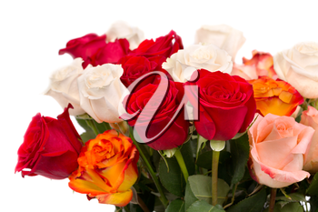 bouquet of multicolored roses isolate on a white background