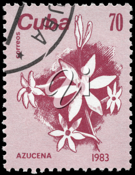 CUBA - CIRCA 1983: A Stamp printed in CUBA shows the Lily, from the series Flowers, circa 1983