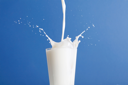 Royalty Free Photo of a Glass of Milk