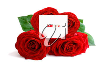 Royalty Free Photo of a Bunch of Roses