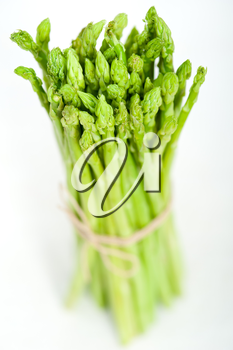 fresh asparagus from the garden over white background